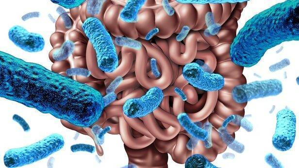 یک عامل مهم در پیشگیری از بیماری ها