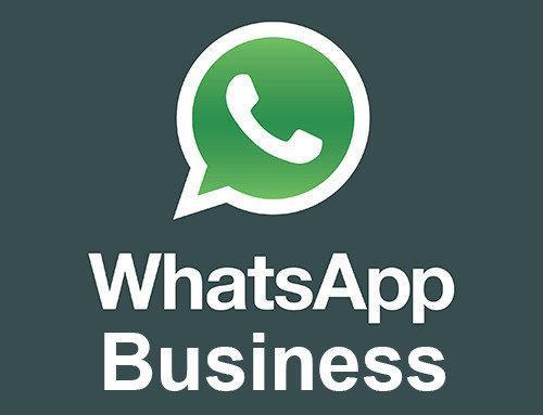 واتس اپ تجاری برای کسب و کارهای اینترنتی