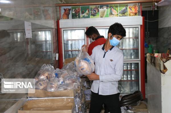 خبرنگاران روزانه 25 هزار قطعه گوشت مرغ در بازار ایلام توزیع می گردد