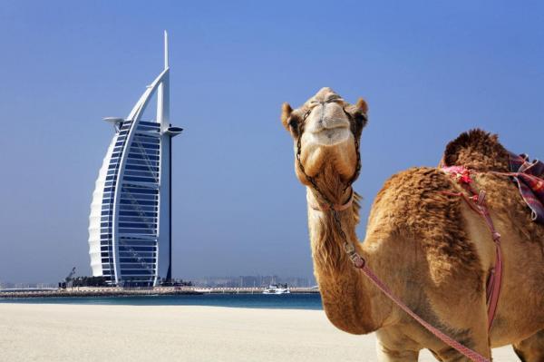 16 دلیلی که ثابت می نماید دبی برترین جای کره زمین است ، فروش بلیط هواپیما به دبی