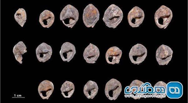 مجموعه ای از صدف های حلزون مراکش قدیمی ترین جواهرات دنیا محسوب می گردد